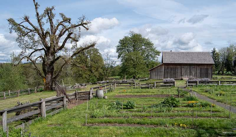 OREGON PARKS AND RECREATION DEPARTMENT - Manson Barn and heritage garden at the historical Champoeg State Park.