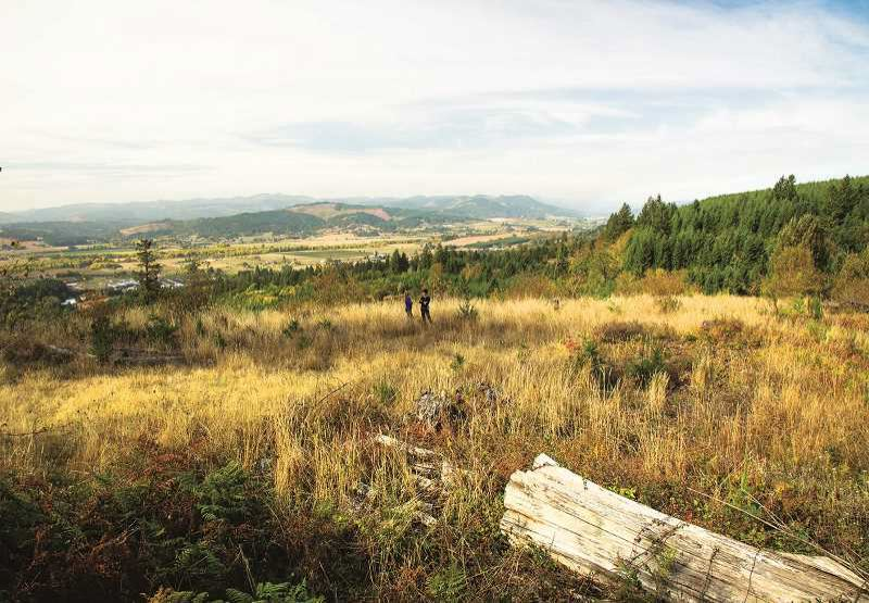 PMG FILE PHOTO - The Chehalem Ridge Natural Area between Forest Grove and Gaston that Metro bought in 2020.