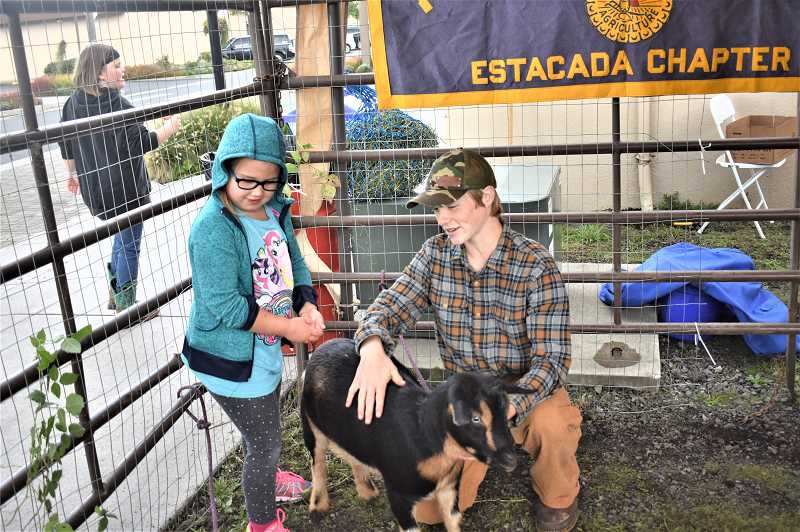 PMG PHOTO: EMILY LINDSTRAND - Community members enjoy a petting zoo organized by the Estacada High School agriculture class