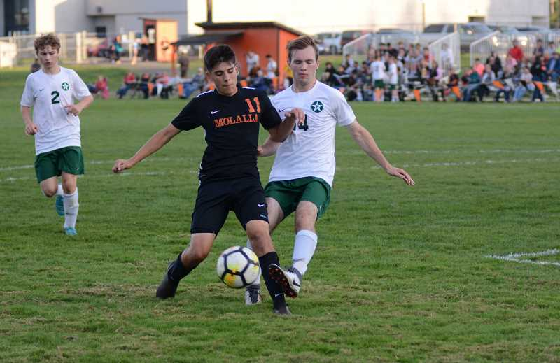 PMG PHOTO: DEREK WILEY - Molalla junior Alex Rojas scored two goals in the second half of the Indians 6-6 victory at Corbett Tuesday.