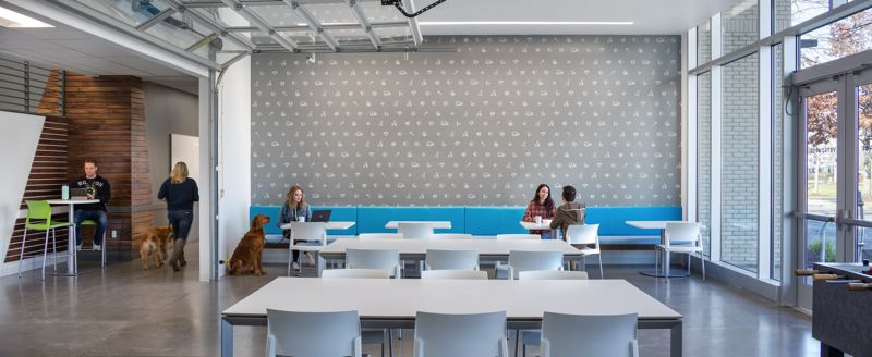 COURTESY: LRS ARCHITECTS - Vetsource's new 35,000-square-foot headquarters had to emrbace both a collaborative culture and be pet friendly at the same time.