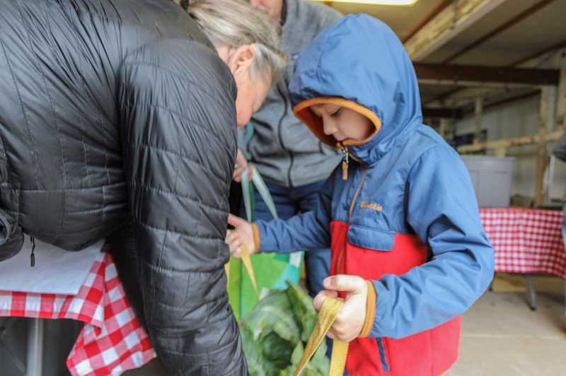 PMG PHOTO: CLARA HOWELL - Crosby McGiffin, 6, helps his dad collect produce during the summertime CSA pick-up.