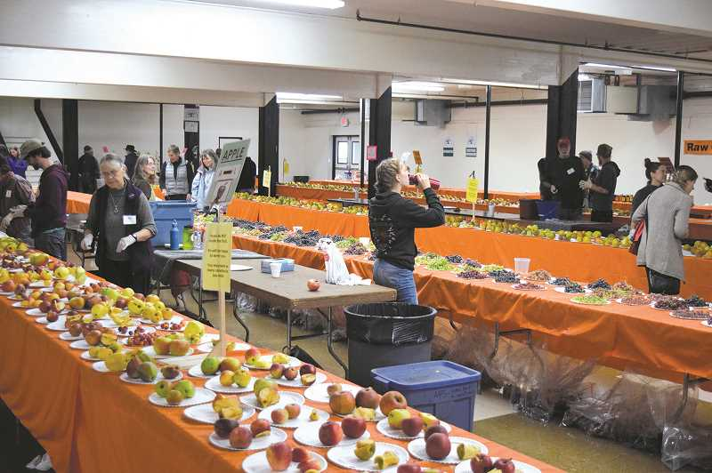 PMG FILE PHOTO: JOHN BAKER -  Pears, apples, grapes and many more fruit varieties will be featured at the Clackamas County Fairgrounds, providing a wealth of heirloom options beyond the typical fruits found in most grocery stores.