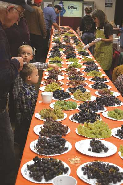 PMG FILE PHOTO - The All About Fruit Show hits the Clackamas County Fairgrounds and Event Center Oct. 19-20.