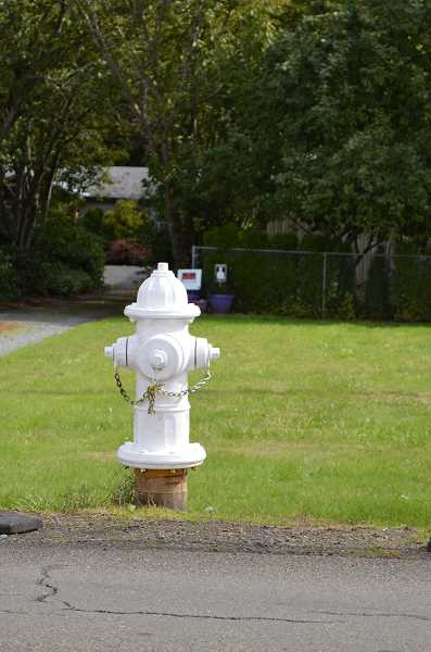 PMG PHOTO: CINDY FAMA - Fire hydrant painted with white primer, waiting for student artwork.