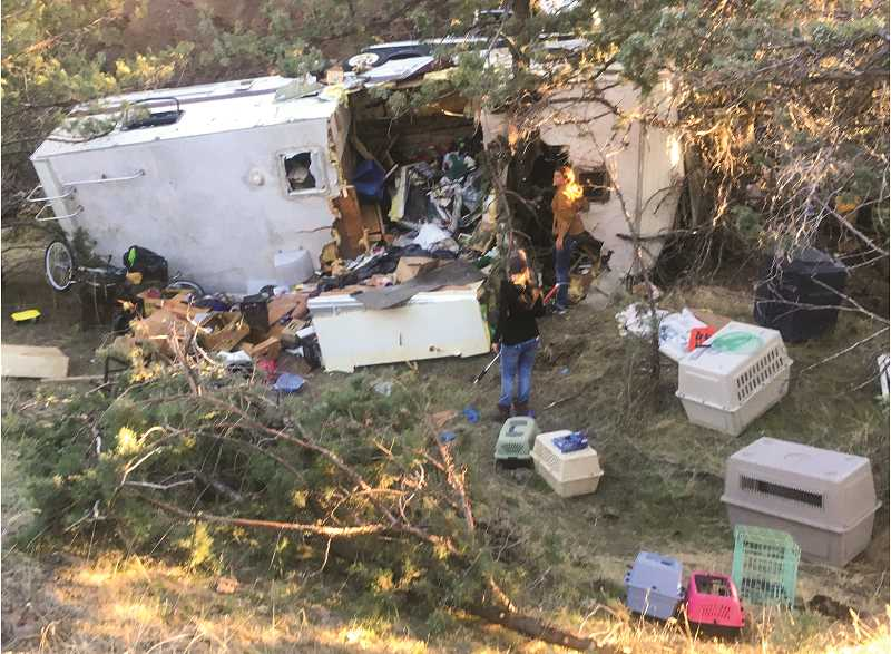 Animal rescue follows injury truck and trailer crash