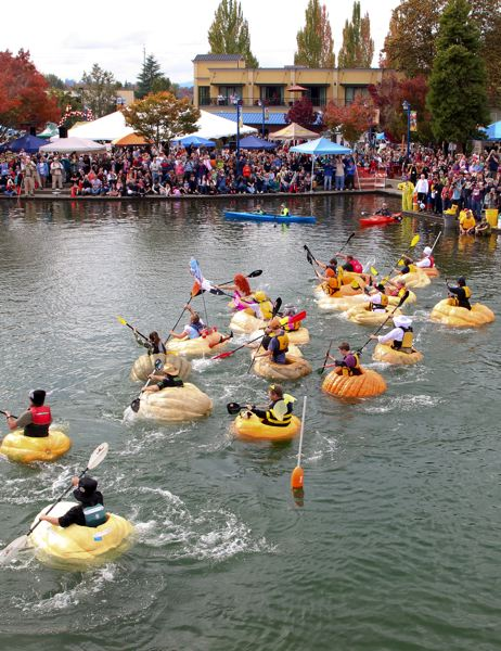 COURTESY PHOTO: CITY OF TUALATIN/ERIC HERMANN - This photograph of a race during the West Coast Giant Pumpkin Regatta, taken by Tualatin Police Officer Eric Hermann, won an award from the International Festival and Events Association.