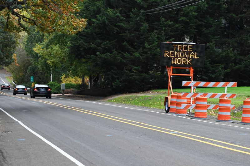 PMG PHOTO: CHRISTOPHER OERTELL - A large sign tells passing drivers about the planned tree cutting along Jackson School Road.