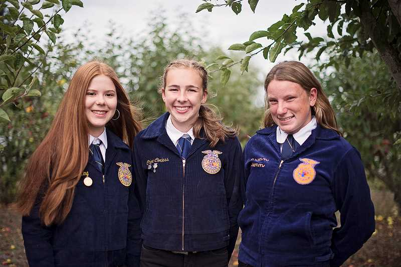 COURTESY PHOTO: MACKENZIE BEHRLE - Members of the horse judging team that will compete at nationals are (from left) Emma King, Chloe Corless, Shelby Nunn and Kelsey Morgan (not pictured).