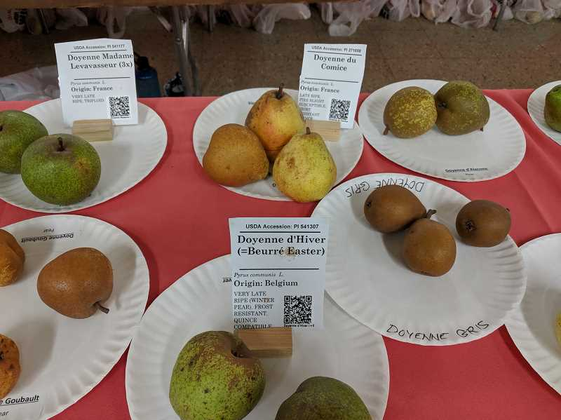 PMG PHOTO: JOHN BAKER - Heirloom fruits were available with origins including Belgium, France and more.