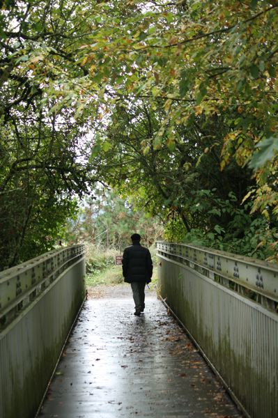 COURTESY PHOTO - There are still places to explore on the Tualatin River National Wildlife Refuge as the weather turns damp and chilly.