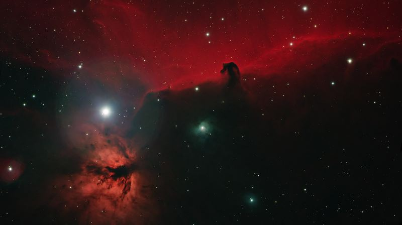 COURTESY PHOTO: GREG MARSHALL, ROSE CITY ASTRONOMERS - Greg Marshall of Rose City Astronomers captured this image of the famous Horse Head Nebula (the dark area on the upper right) with other nearby nebulas in Orion.
