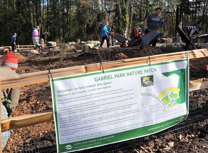 PORTLAND PARK AND REC - The Gabriel Park Nature Patch ' includes native and ornamental flowering shrub beds with natural seating and habitat features.'