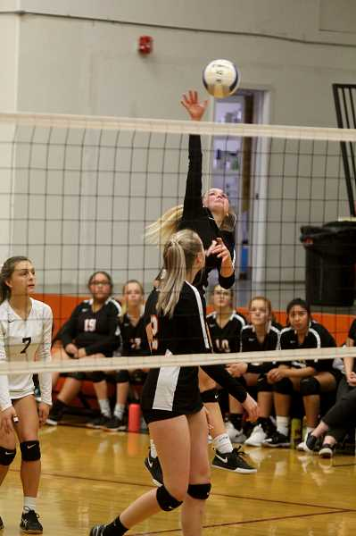 STEELE HAUGEN - Junior Lucy Louden earns first team all-league honors for the Culver Lady Dawgs volleyball team.