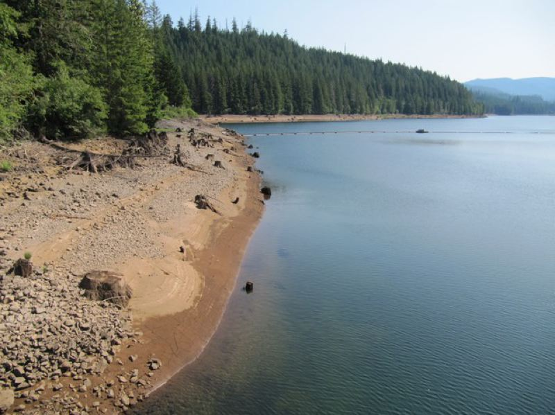 CASSANDRA PROFITA/OPB/EARTHFIX - The banks of Reservoir 1 in the Bull Run Watershed.
