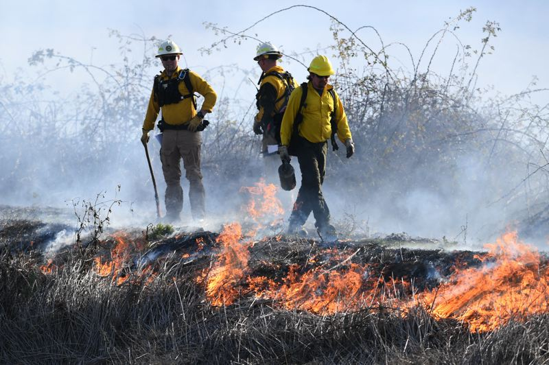 PMG PHOTO: CHRISTOPHER OERTELL - State and federal firefighters monitor a controlled brush fire at the Wapato Lake National Wildlife Refuge on Thursday, Nov. 7.