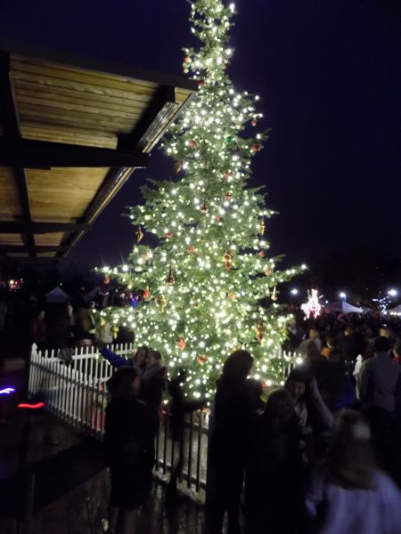 PMG PHOTO: RAY PITZ - The tree-lighting in Old Town Sherwood is a highlight of the annual Holiday Festival.