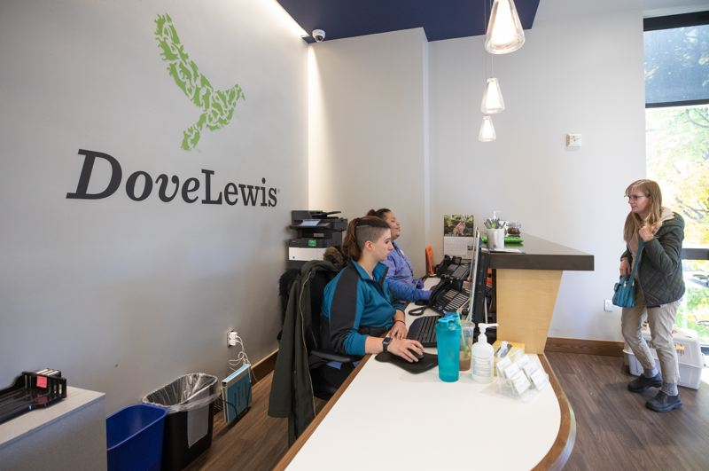 PMG PHOTO: JONATHAN HOUSE - The new DoveLewis logo hovers over the upstairs greeting area of the Northwest Portland pet hospital.