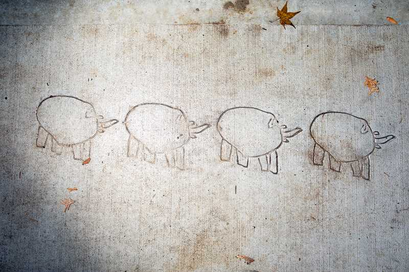 PMG PHOTO: JAIME VALDEZ - A row of mammoths permanently imprinted on Sagert Street in Tualatin. This is one of four designs for the city's community art project.