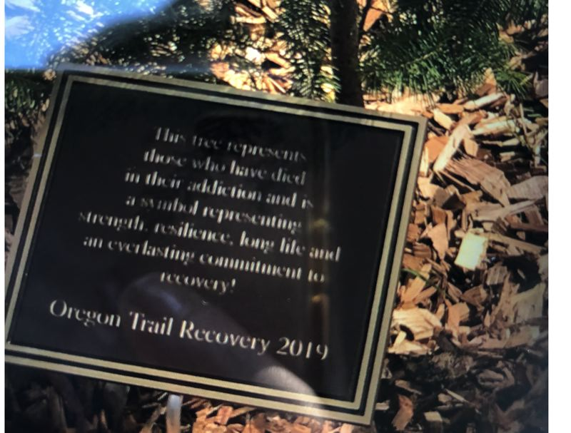 COURTESY PHOTO - A plaque at the tree says it is to honor those with have died from addictions, while representing a commitment to recovery.