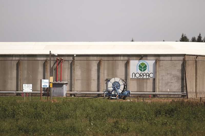 PMG FILE PHOTO - NORPAC food processing plant in Brooks is among the facilities that will be affected by the ongoing financial troubles and uncertainties.
