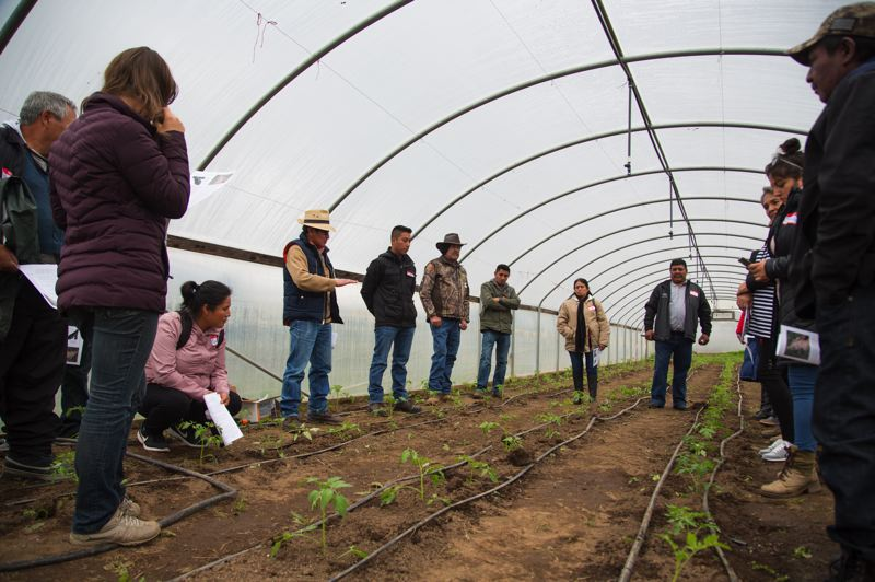 COURTESY OF ADELANTE MUJERES - Students in Adelantes Mujeres' 12-week sustainable agriculture course discuss farming techniques in a greenhouse.
