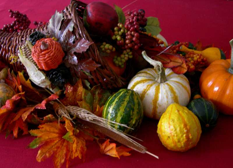 Learn to make a Thanksgiving centerpiece at a special workshop led by Molly Todd of Petals Flower Co. Nov. 25.