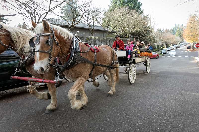 PMG PHOTO: JAIME VALDEZ - Larry Chafin, owner of Chafin Farm Carriages in Sweetholm, takes families on horse carriage rides throughout downtown Lake Oswego.