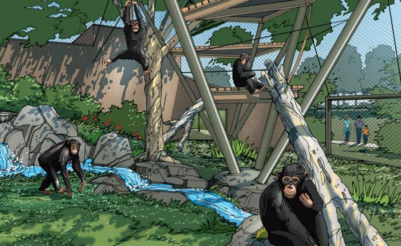 COURTESY PHOTO: OREGON ZOO - Design concepts for Primate Forest include climbing structures, complex spaces for family groups, and enhanced opportunities for enrichment and keeper interaction.