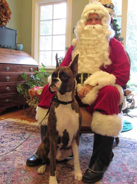 Santa doesn't mind meeting with pups like Cash, whose owner is Buffy Mercep, a loan officer with Guild Mortgage in Lake Oswego.