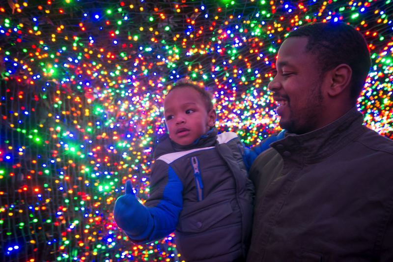 COURTESY PHOTO: MICHAEL DURHAM/OREGON ZOO - More than 1.5 million brightly colored lights transform the Oregon Zoo into a walk-through winter wonderland during ZooLights, Nov. 29-Jan. 5.
