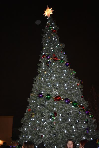PMG FILE PHOTO - The city of Fairviews Christmas tree will begin its holiday season glow at 5 p.m. Saturday, Dec. 7.