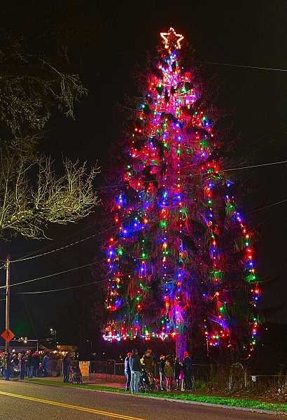 DAVID F. ASHTON - Revelers celebrated as the SMILE Christmas Tree was lit for the first time this season overlooking Oaks Bottom, on the evening after Thanksgiving.