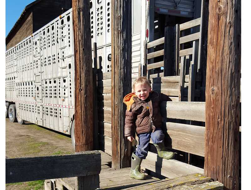 PHOTO COURTESY OF KEELIA CARVER - Max loved animals, especially his sheep, Patissa. He was an energetic boy who wanted to be just like his dad.