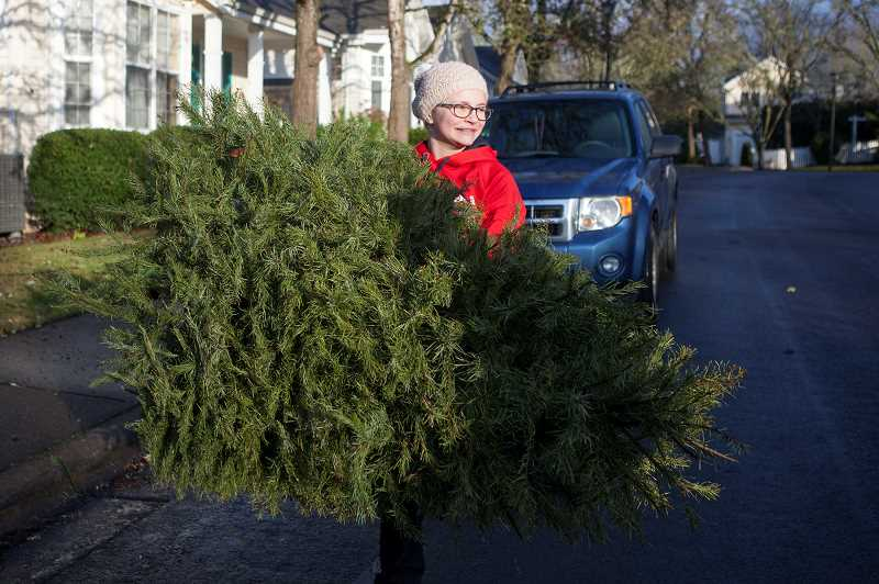 PMG PHOTO: JAIME VALDEZ - Annika Martin, a Scout with Troop 194 and a sixth grader at Three Rivers Charter School, carries a Christmas tree to the back of a truck. Scouts collected trees as part of an annual fundraiser for Scouts.