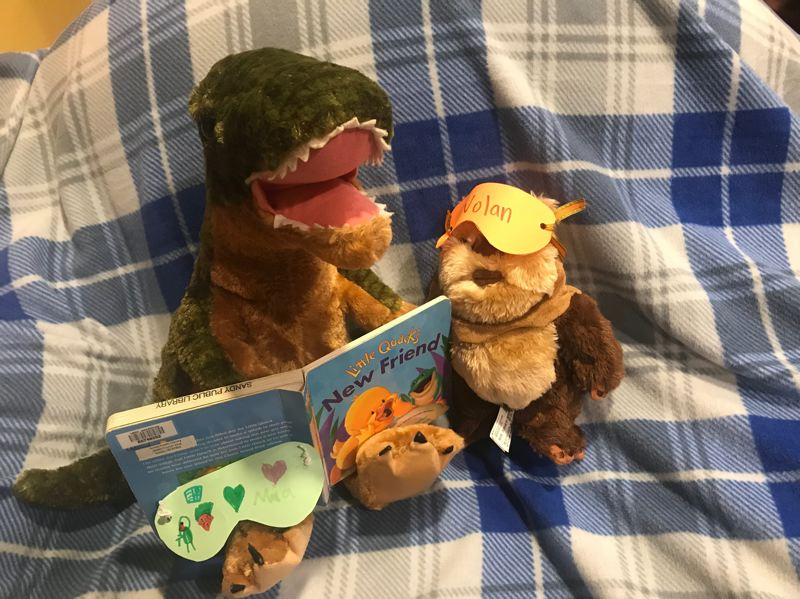 COURTESY PHOTO - Children will receive photos depicting their stuffed animals overnight antics the day after their sleepover.