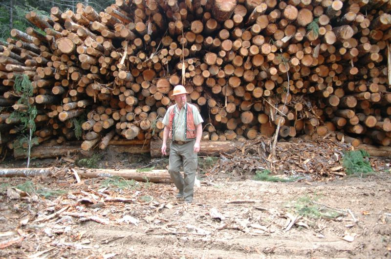 FILE PHOTO - Floyd Walker, a timber sale administrator for the Clackamas River Ranger District of the Mt. Hood National Forest, inspects a load of logs in 2015.