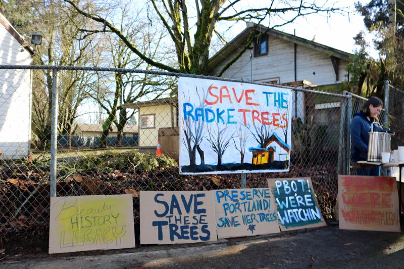 PMG PHOTO: ZANE SPARLING - Activists held a rally for the Radke trees in the St. Johns neighborhood of Portland on Sunday, Jan. 19.