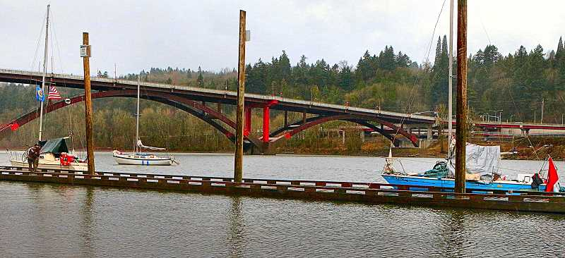 DAVID F. ASHTON - Although watercraft are only permitted to tie up at Portland Parks docks for a maximum of four hours, it appears some itinerant boaters have taken up permanent residence along the Willamette River - like these, at Sellwood Riverfront Park.