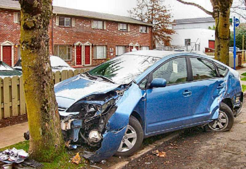 RITA A. LEONARD - The Toyota Prius in the Brooklyn New Years incident was prevented by this Milwaukie Avenue street tree from endangering anyone on the sidewalk towards which it was headed.