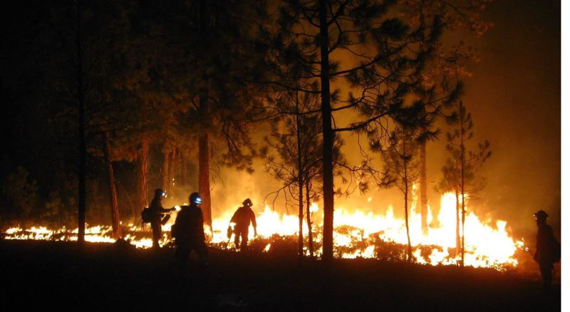 COURTESY PHOTO - Wildfires, like this one in Central Oregon, could get a lot of attention from lawmakers in the short February session.
