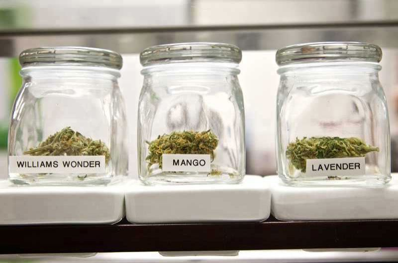 PMG FILE PHOTO - City audit criticizes regulation of cannabis industry.