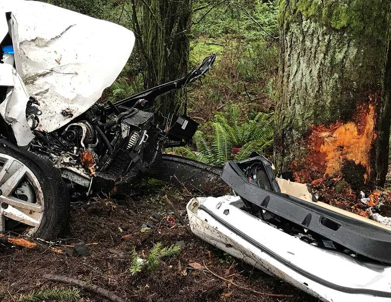 COURTESY PHOTO: CCSO - Charles Anthony Brennan, 16, of Oregon City, died crashing into this tree near Beavercreek.