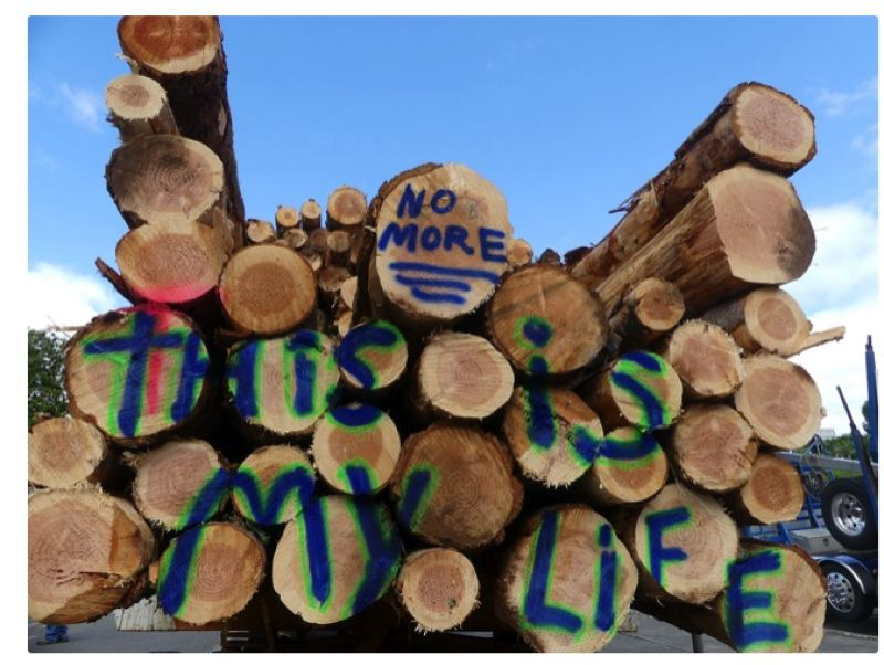 PMG FILE PHOTO - A Timber Unity rally is planned in the Capitol to press lawmakers on possible greenhouse emissions legislation.
