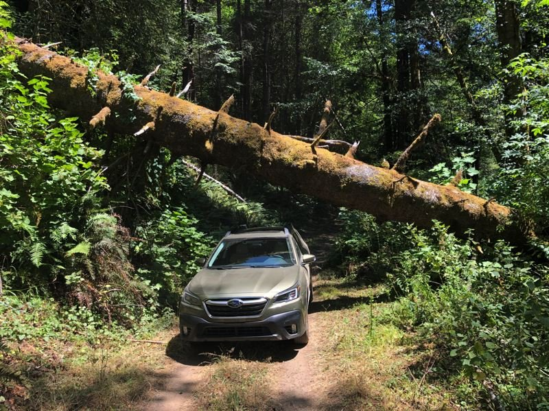 PMG PHOTO: JEFF ZURSCHMEIDE - This is why so many people who love the outdoors choose the Subaru Outback.