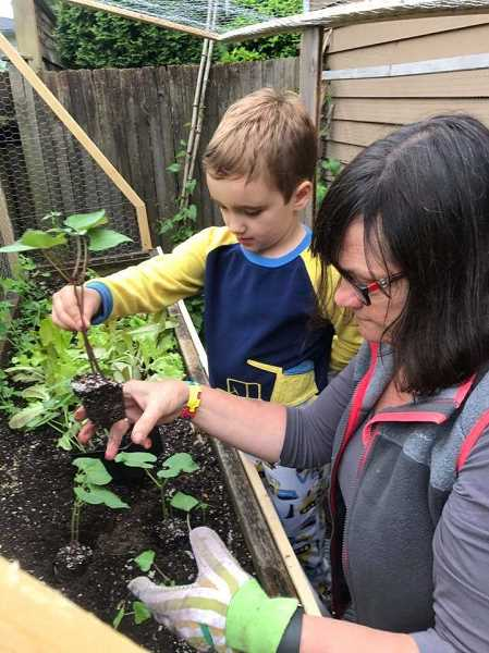 COURTESY PHOTOS - Henry Jennings gardens with his grandmother, Priscilla Robinson, an OSU Master Gardener who encourages people to plan now for a successful harvest.