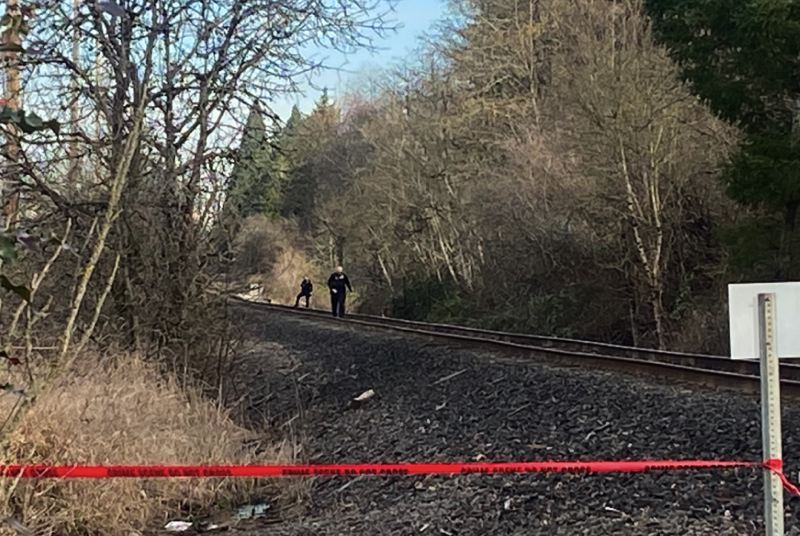 KOIN 6 NEWS PHOTO  - Deputies with the Washington County Sheriff's Office responded to a wooded railroad track after a person out for a hike reported finding a human skeleton.