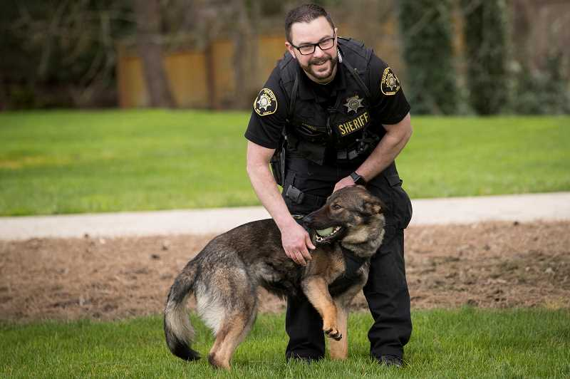 PMG PHOTO: JAIME VALDEZ - Deputy Michael Zaugg plays fetch with K-9 Bolo. The canine specializes in tracking.