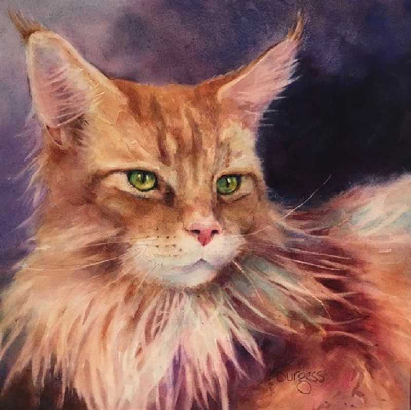 COURTESY PHOTO: MARY BURGESS - Artist Mary Burgess uses watercolors to paint some of her animal subjects. Her work will be on display at the Calvin Presbyterian Church in Tigard through April.