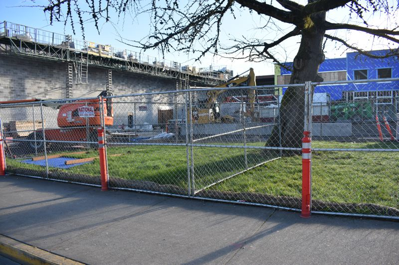PMG PHOTO: TERESA CARSON - The new section of the high school along Main Avenue will be set back from the street much farther than the old main entrance as the placement of the old ginkgo trees shows.